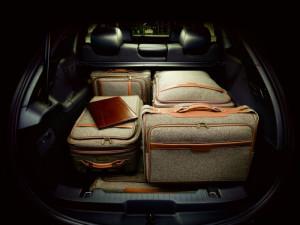 luggage-area